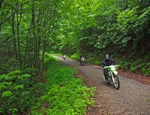 Cataloochee Valley Ride